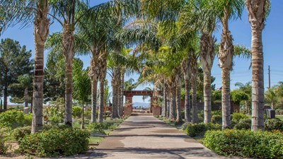Grounds with a walkway lined with palm trees leading to a pavilion at Resthaven Park Cemetery.