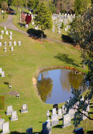 Close up view of pond in the cemetery grounds at Forsyth Memorial Park