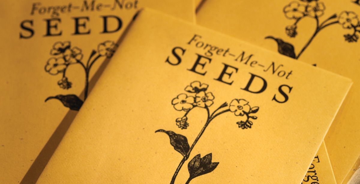 Mementos of yellow packet of seeds