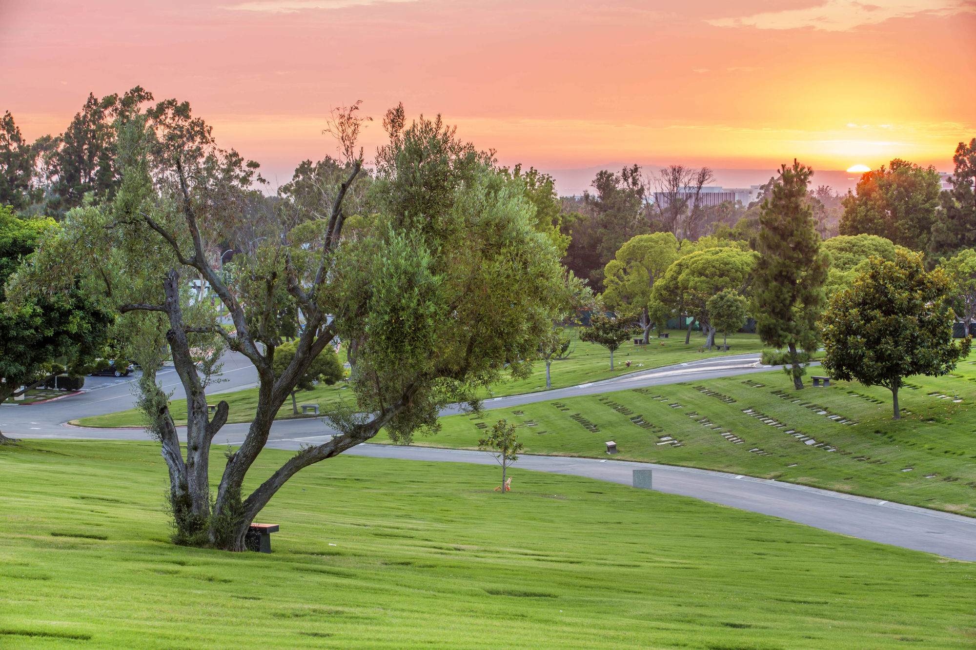 Sunset at Pacific View Memorial Park