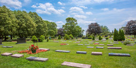 Cemetery Grounds at Memorial Park Cemetery