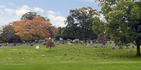Cemetery Grounds with flat markers and headstones at Alexander Memorial Park