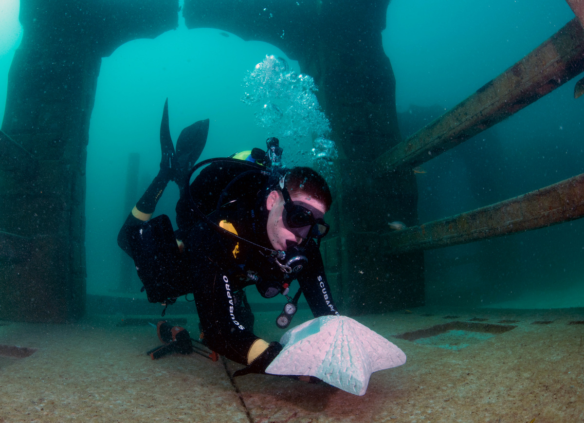 A diver places a custom cremation marker in Neptune Memorial Reef.