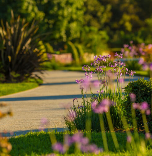 Scenic walkway with flowers, green grass and trees.